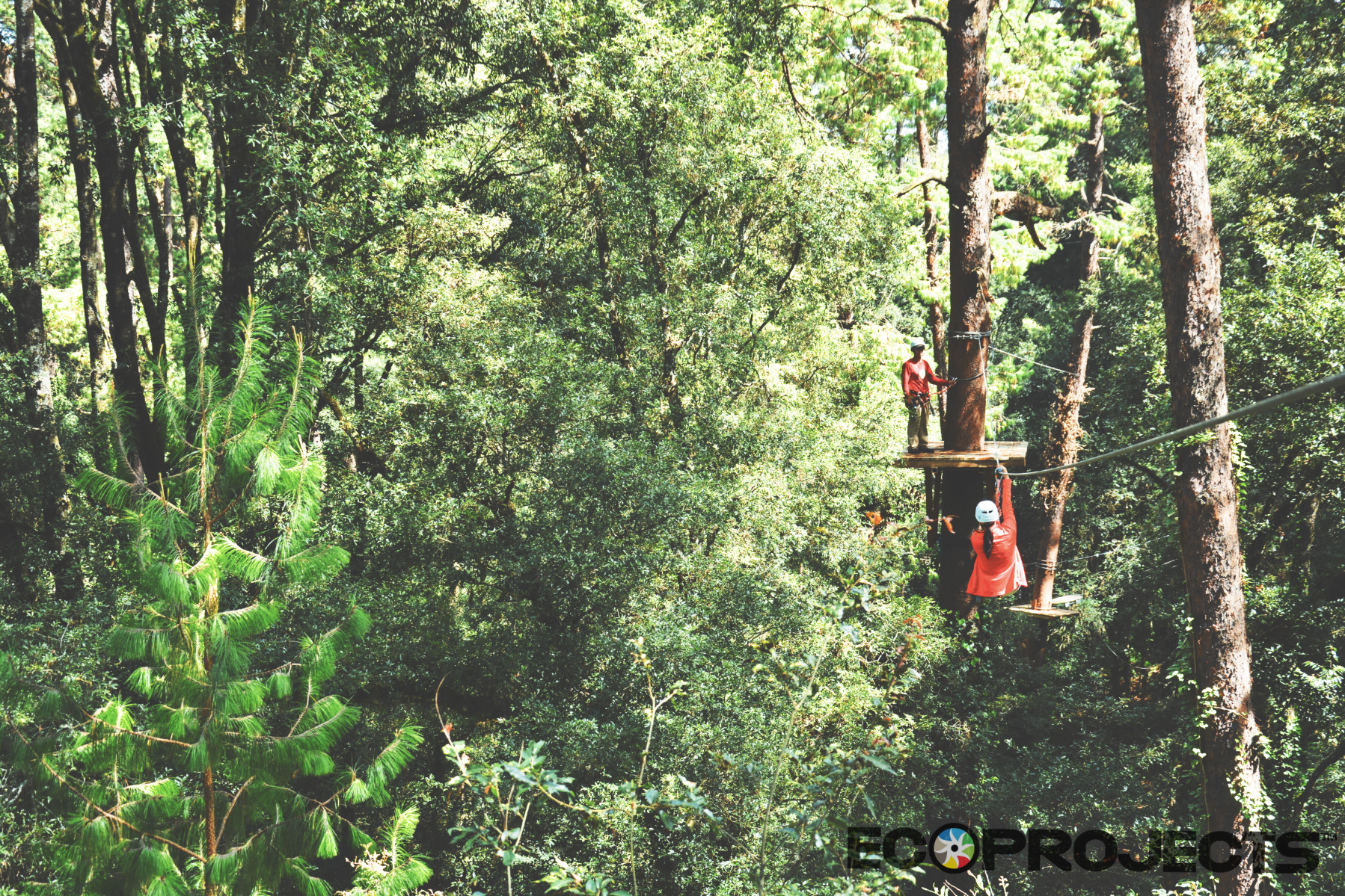 Canopy Tour 13
