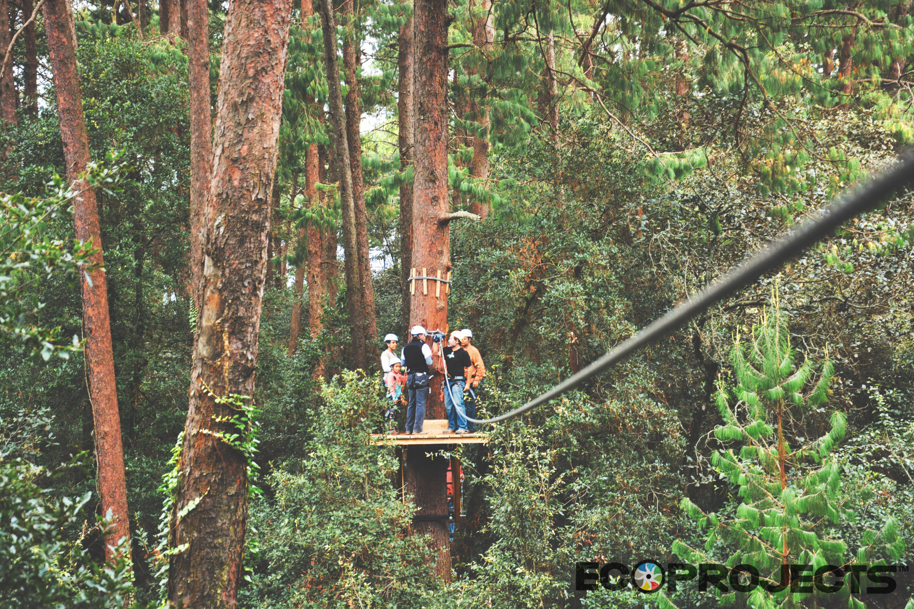 Canopy Tour 19