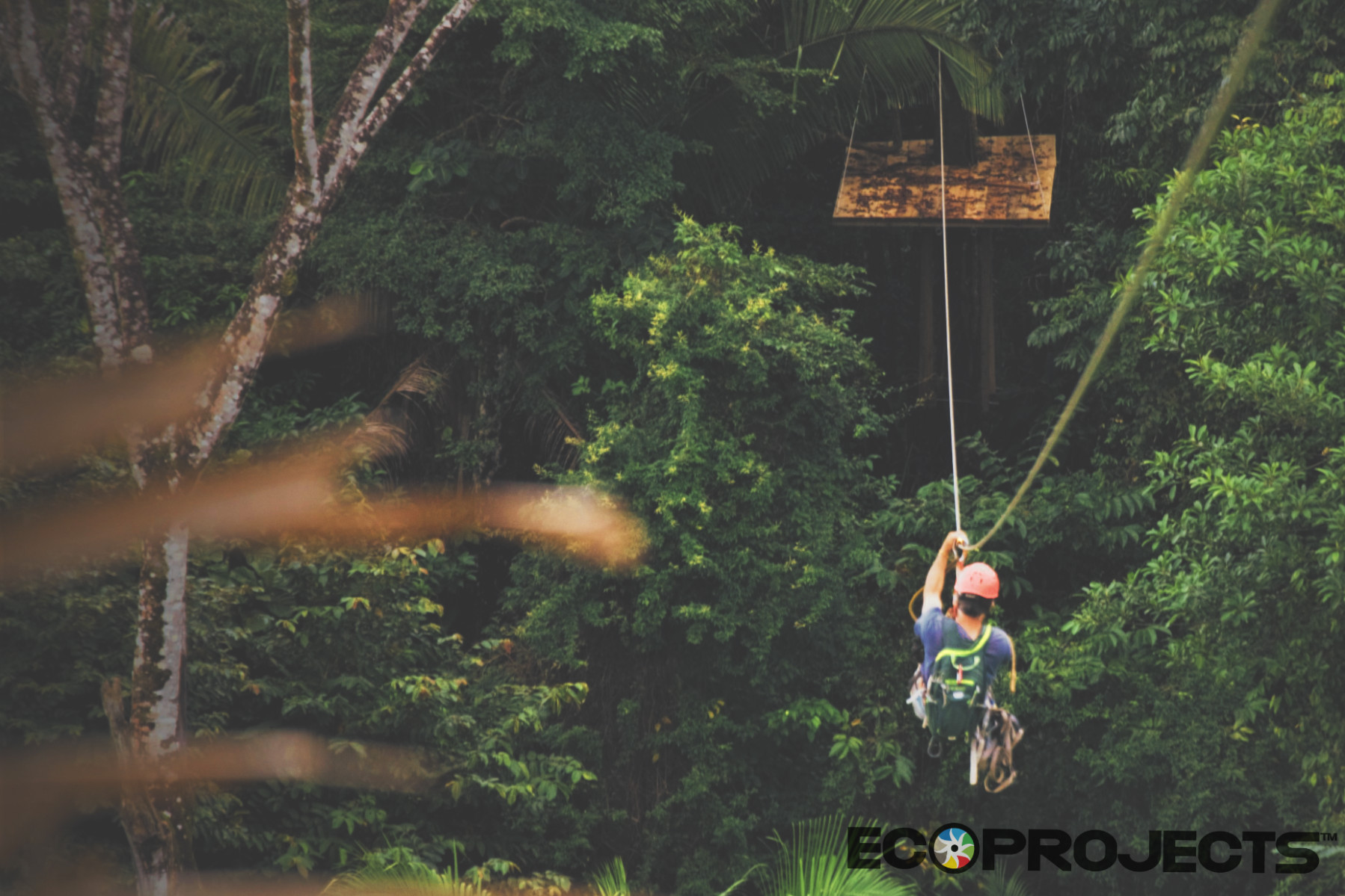 Canopy Tour 4